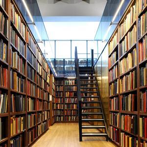 Библиотеки Мамоново